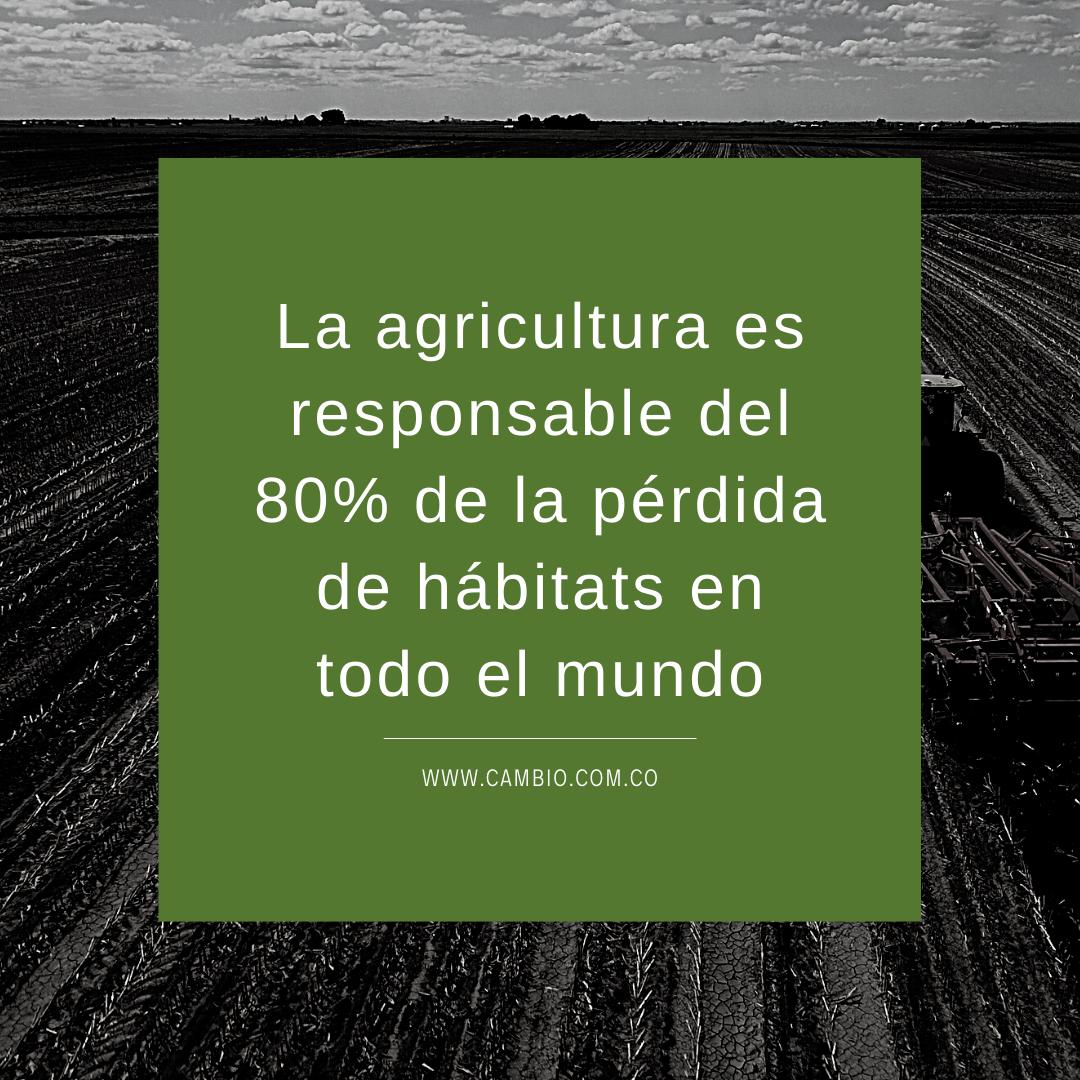 grafico sobre la Agricultura